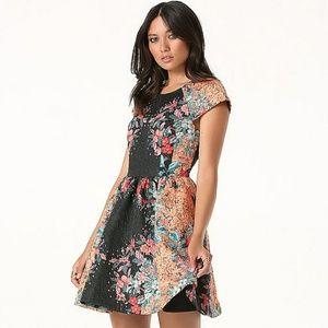 🎀Bebe Print Fit & Flare Dress